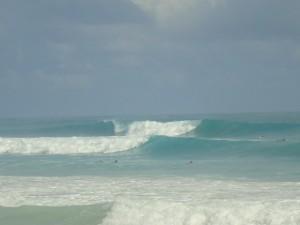 playa del macao, federación dominicana de surfing