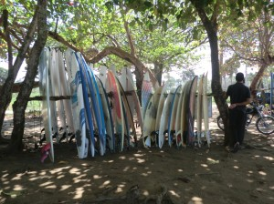 Tablas de Surf en Casa de la Olas House of Waves3